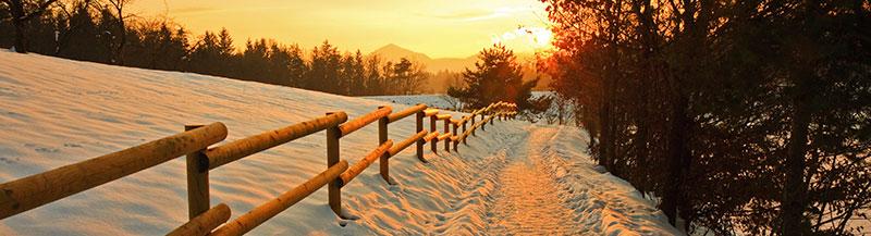 path beside fence in winter