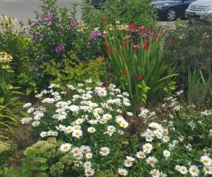 hospice gardens (3)