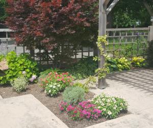 hospice gardens (6)