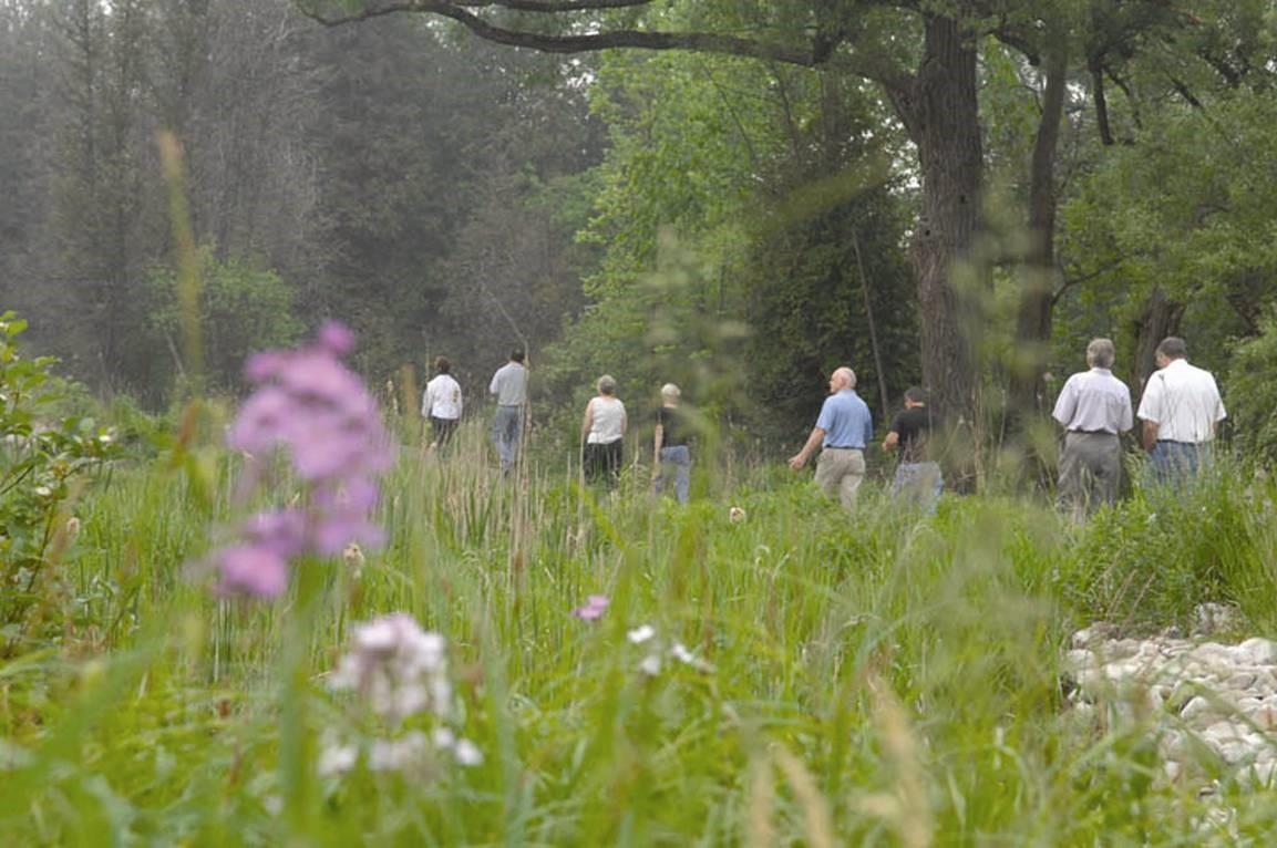 Bereavement Walking Group